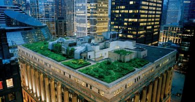Развенчание мифов: 5 вещей, которые нужно знать о зеленой инфраструктуре