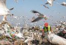 Преображение одной из крупнейших неконтролируемых мусорных свалок Европы